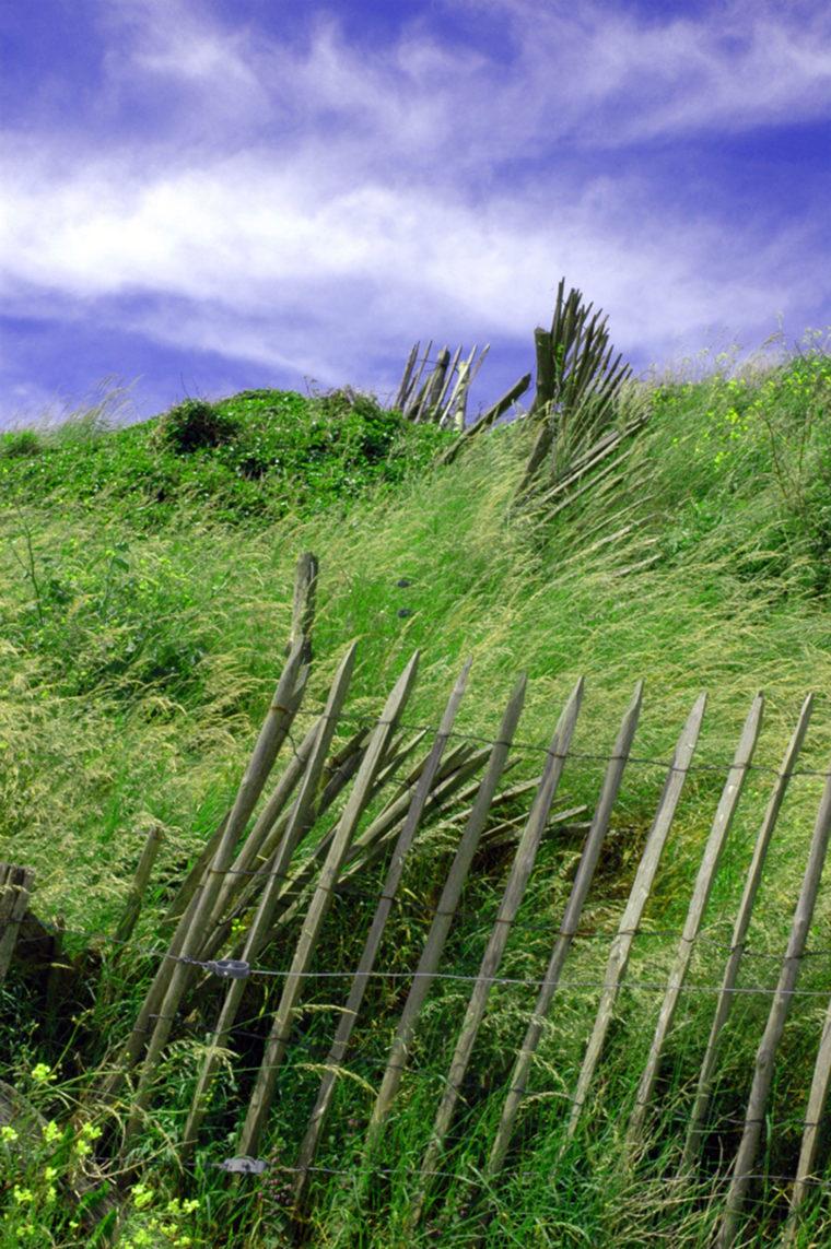 Barriere dans le vent Juillet 2007