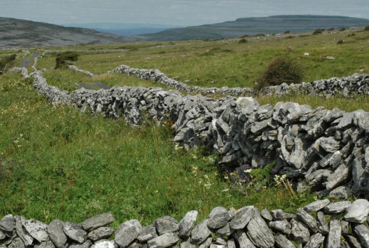 Irlande le Burren 2 Aout 2008