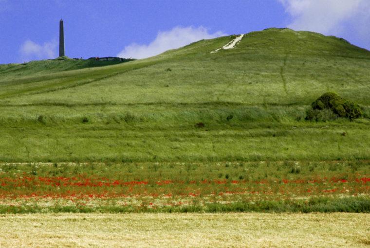 Paysage du Nord Juin 2007