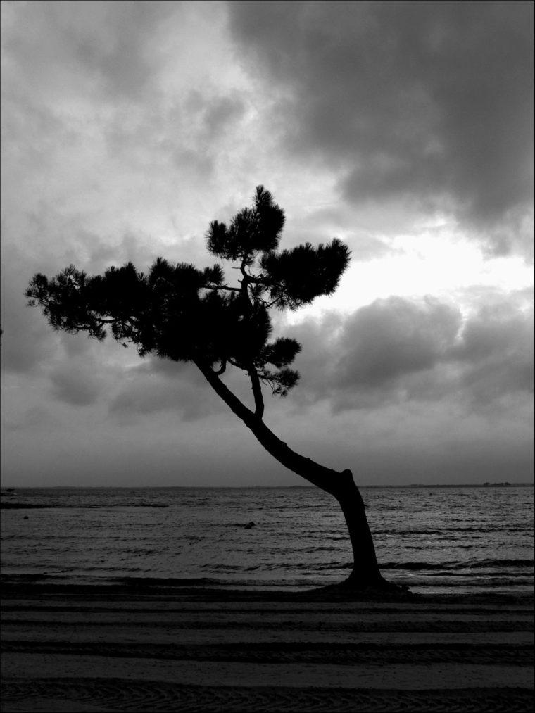 Solitude Mai 2008