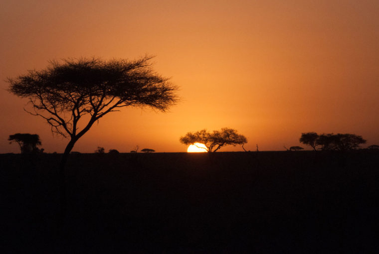 Tanzanie Lever de soleil Janv 2017