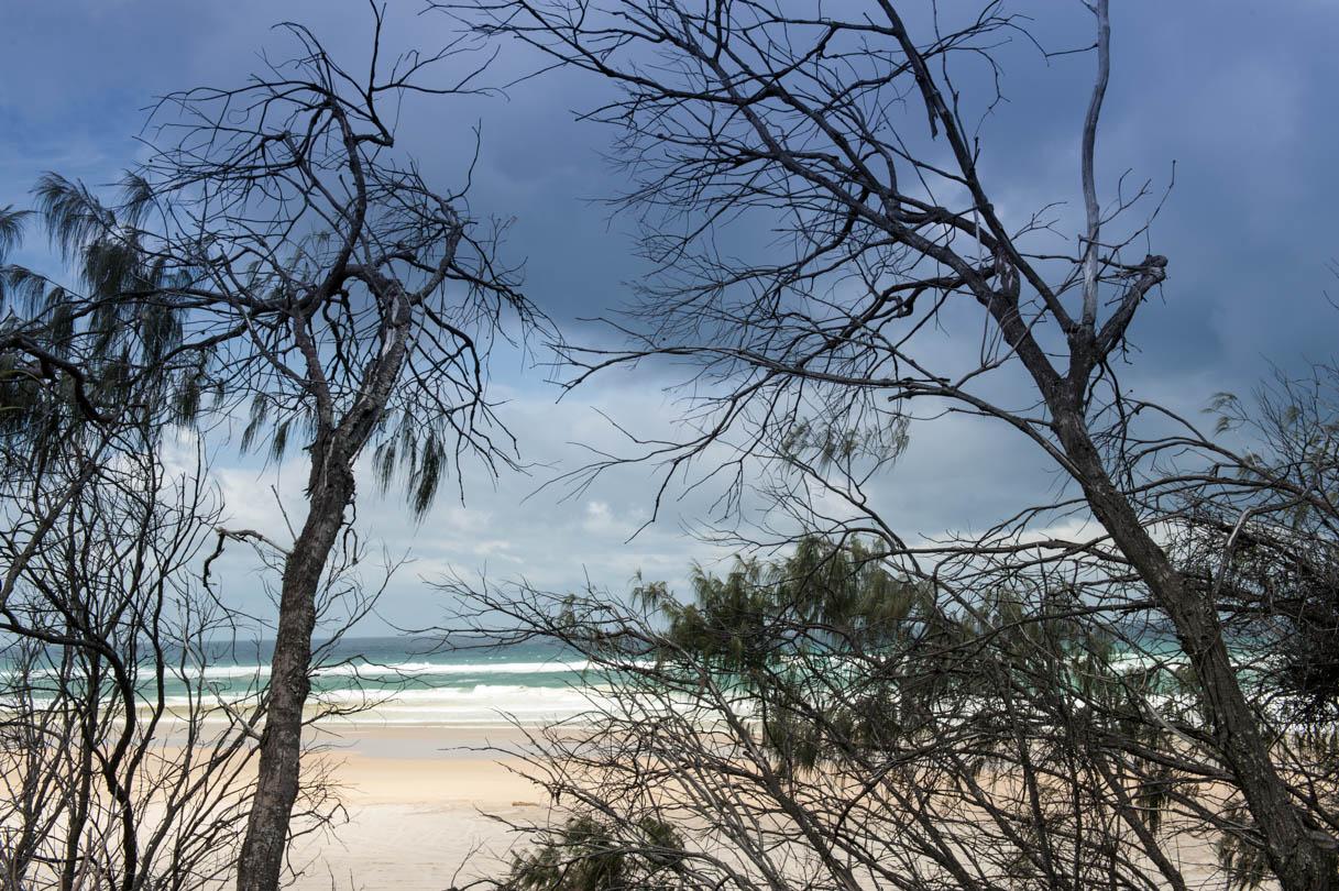 Fraser Island-27