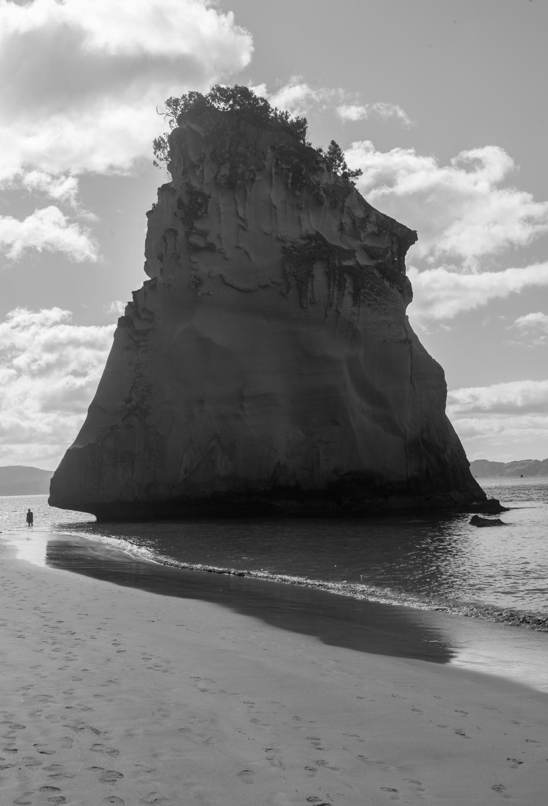 Road Trip NZ ile du Nord-136