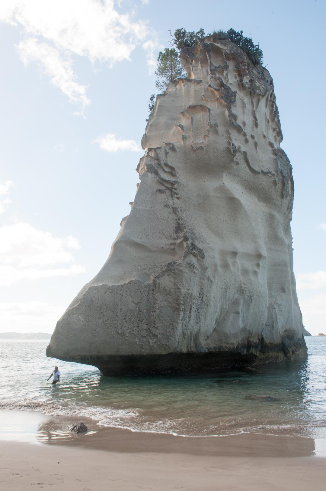 Road Trip NZ ile du Nord-138