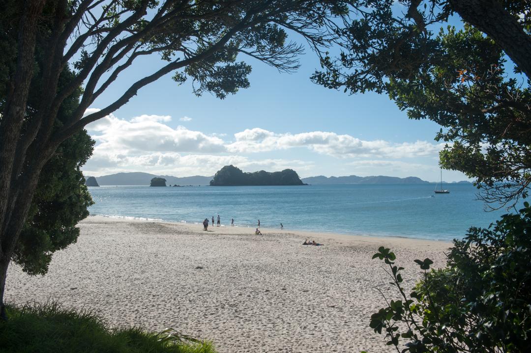 Road Trip NZ ile du Nord-145