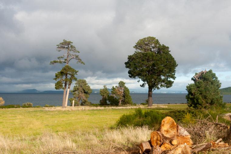 Road Trip NZ ile du Nord-24
