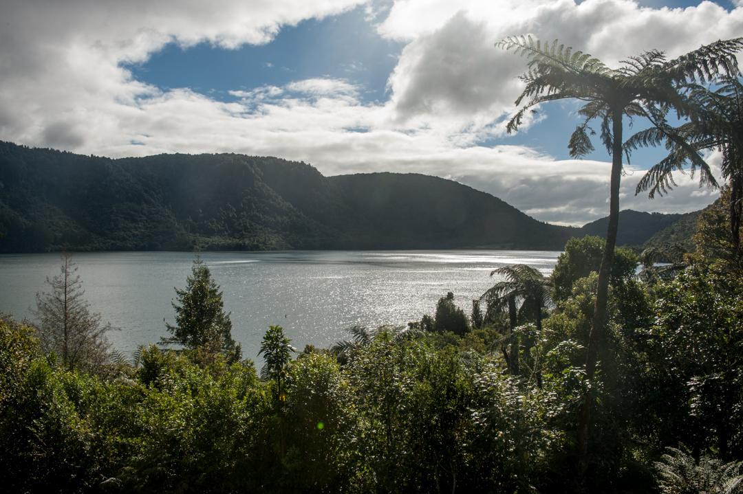 Road Trip NZ ile du Nord-28