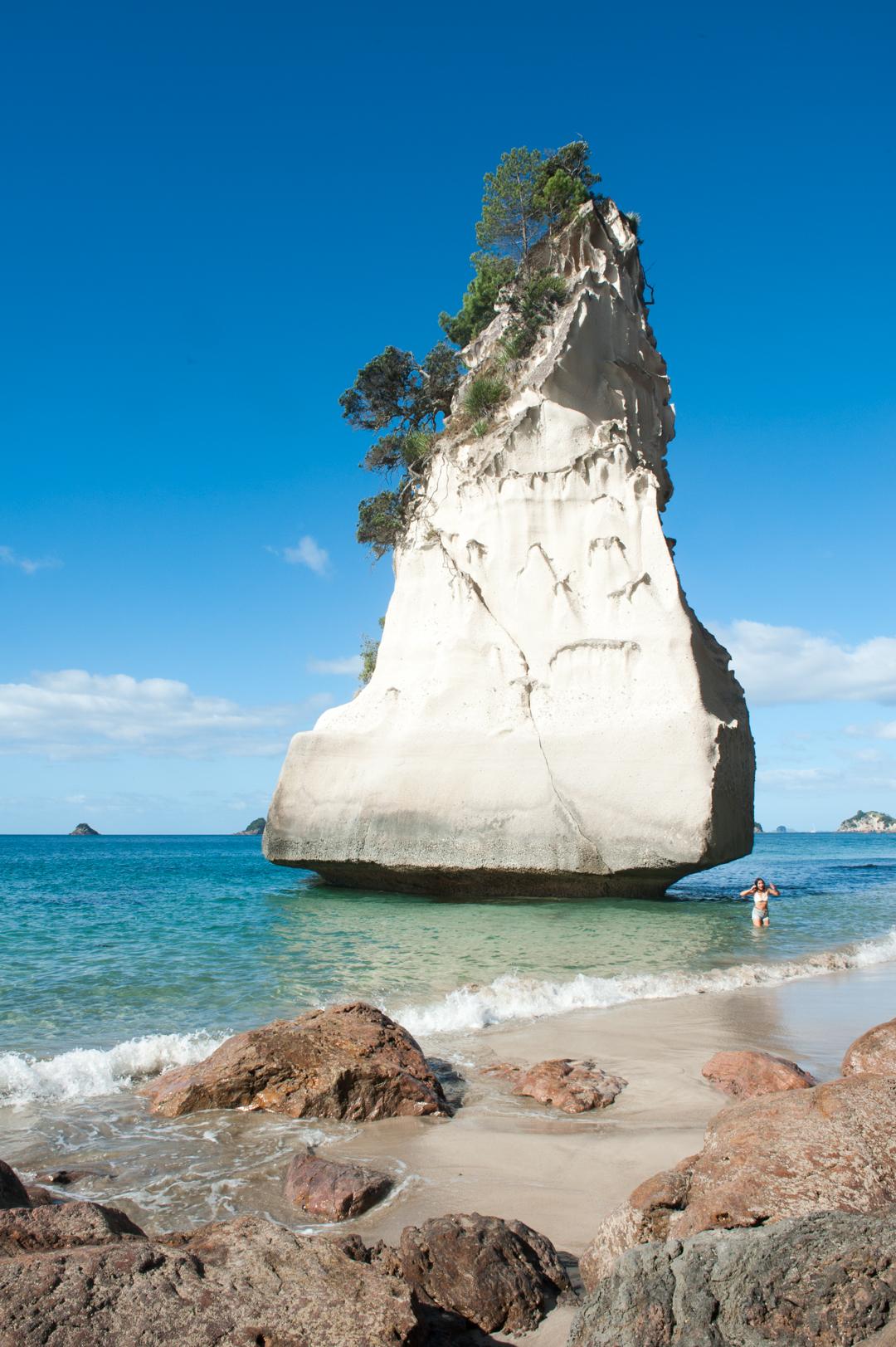 Road Trip NZ ile du Nord-37