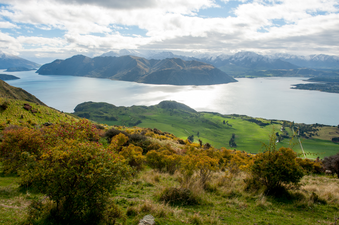 Road Trip NZ ile du Sud-133