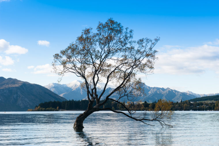 Road Trip NZ ile du Sud-150
