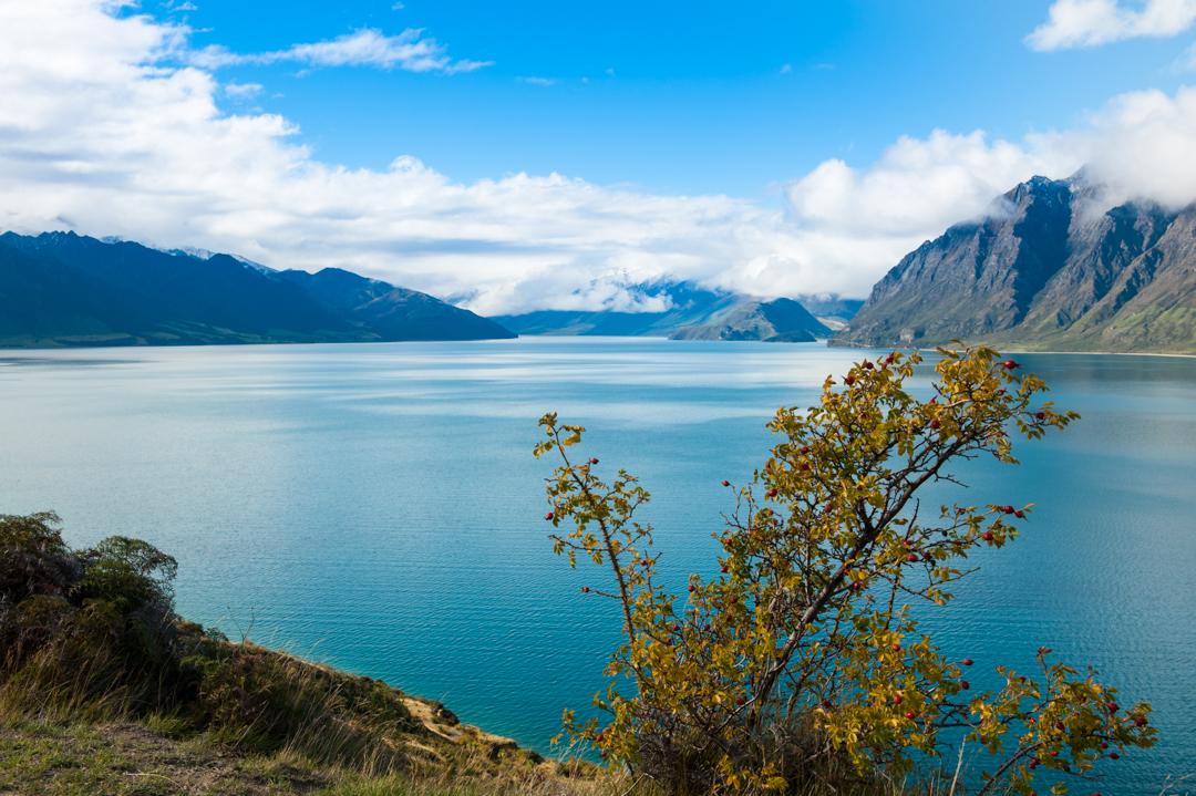 Road Trip NZ ile du Sud-158