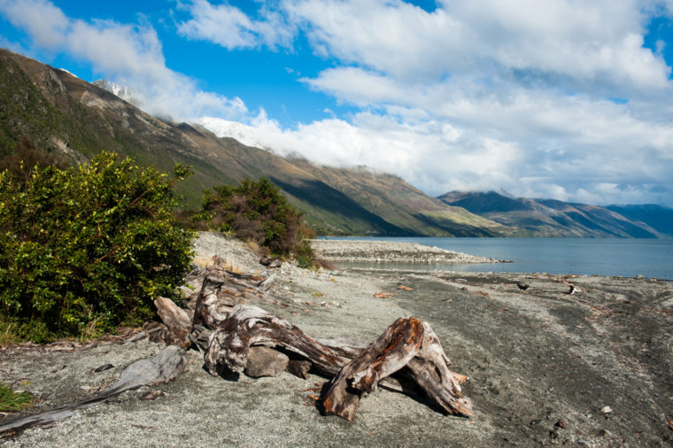 Road Trip NZ ile du Sud-165