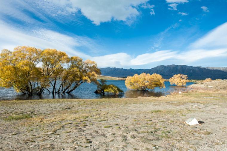 Road Trip NZ ile du Sud-17
