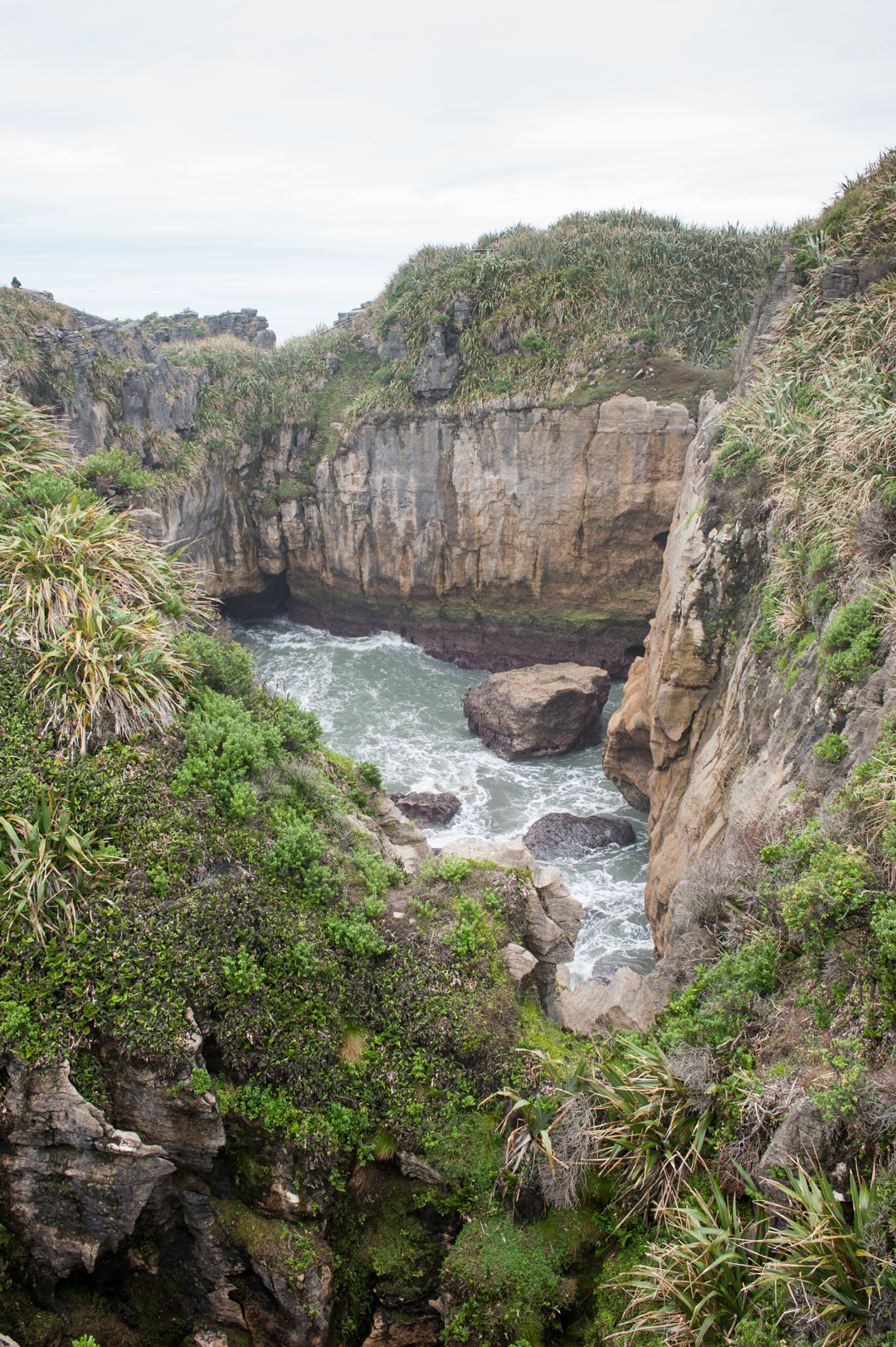 Road Trip NZ ile du Sud-201