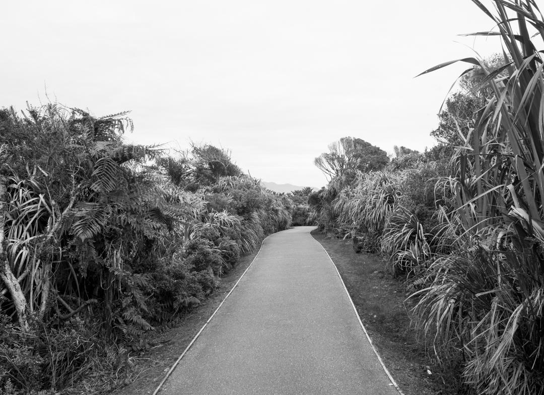 Road Trip NZ ile du Sud-215