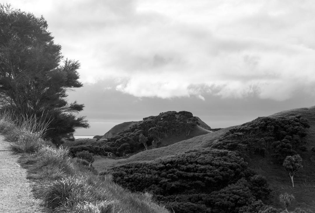 Road Trip NZ ile du Sud-230