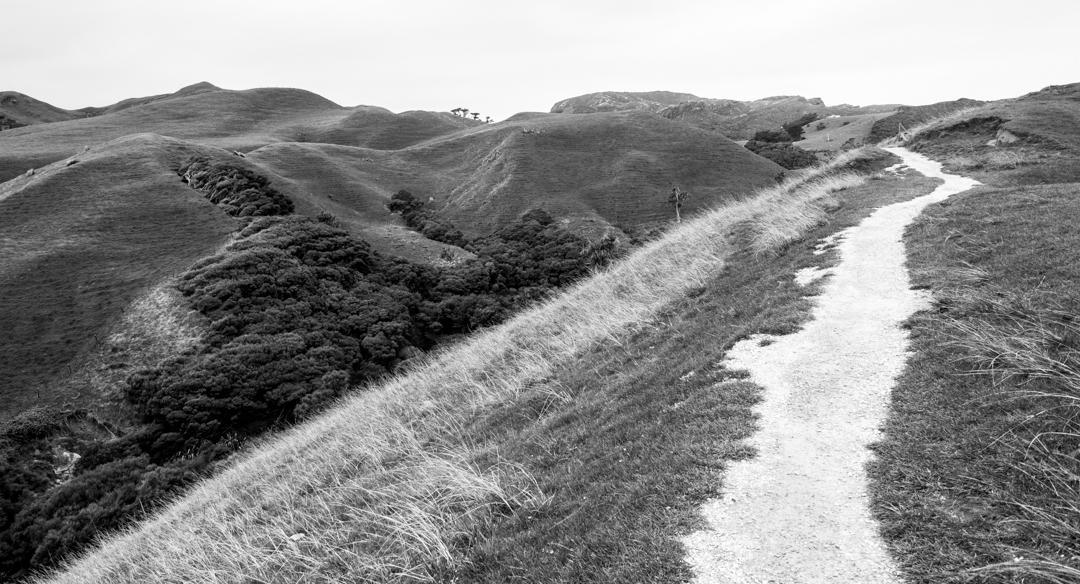 Road Trip NZ ile du Sud-243