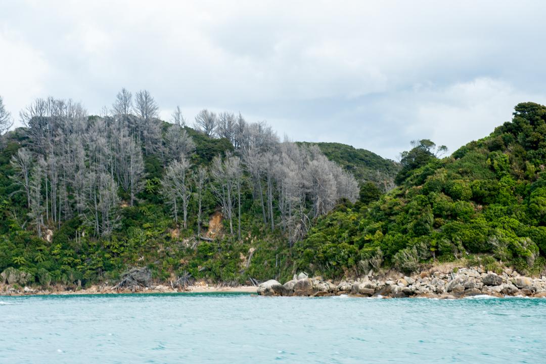 Road Trip NZ ile du Sud-257