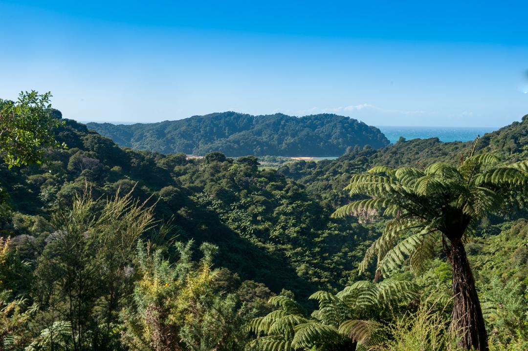 Road Trip NZ ile du Sud-270