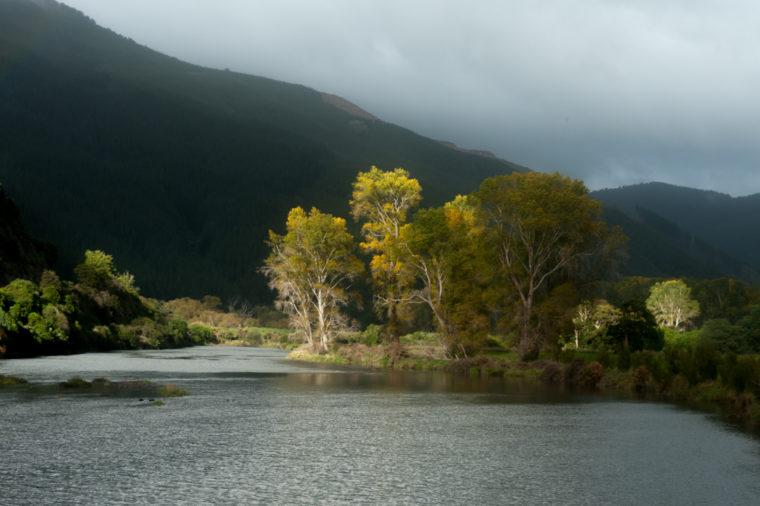 Road Trip NZ ile du Sud-281