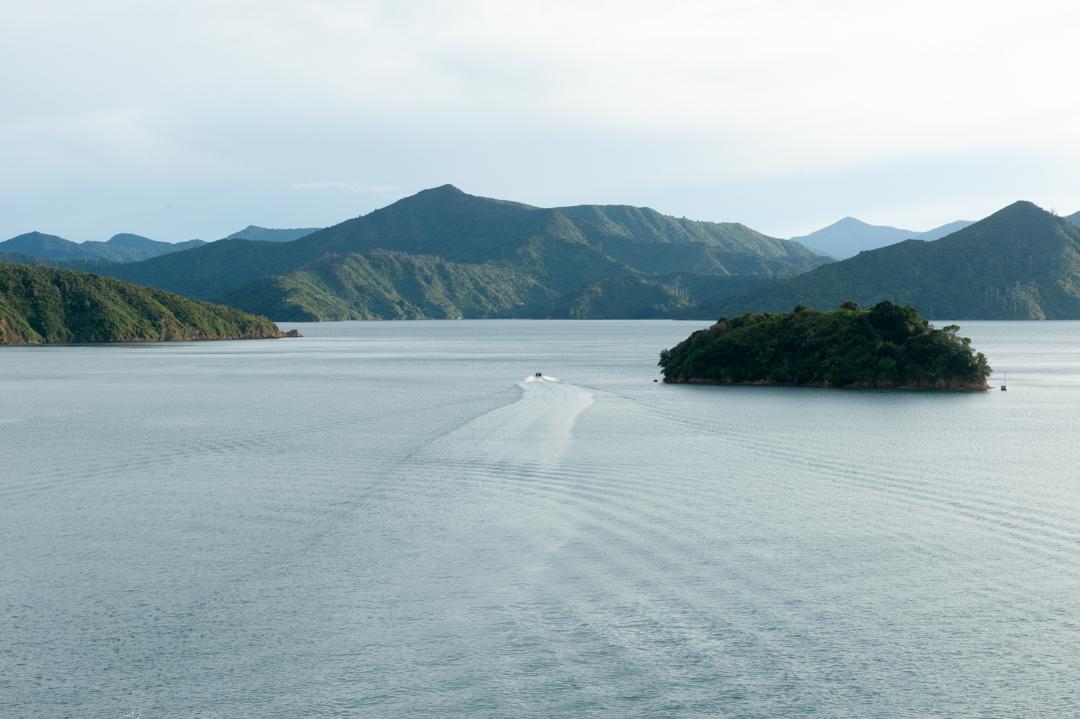 Road Trip NZ ile du Sud-287