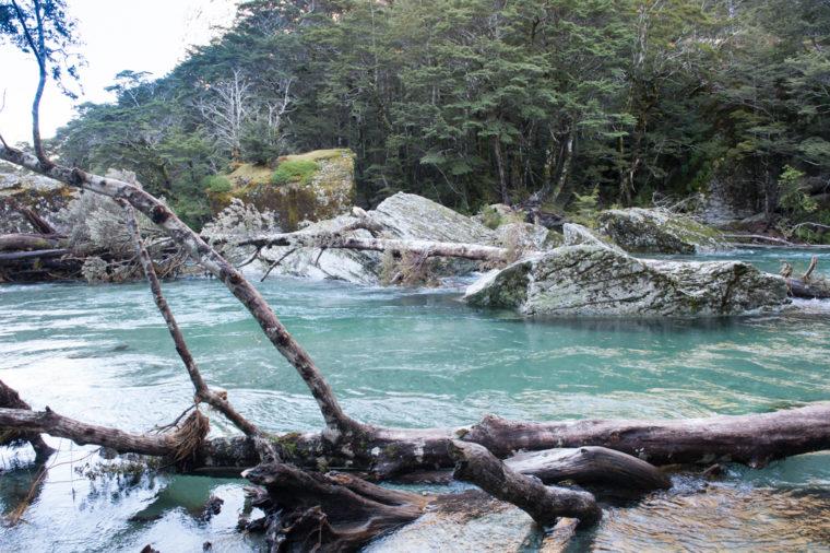 Road Trip NZ ile du Sud-62