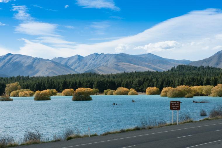 Road Trip NZ ile du Sud-7