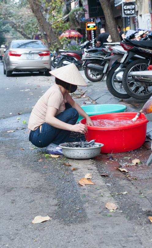 Hanoi-137
