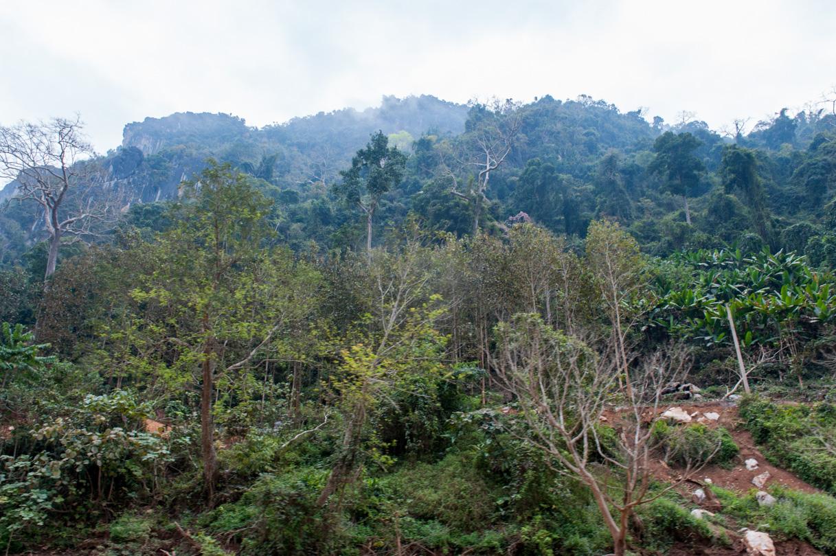 Laos de Nong Khiaw à Mong Ngoi-25