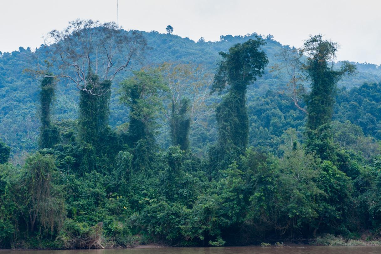 Laos de Nong Khiaw à Mong Ngoi-33
