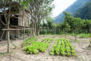 Laos de Nong Khiaw à Mong Ngoi-64