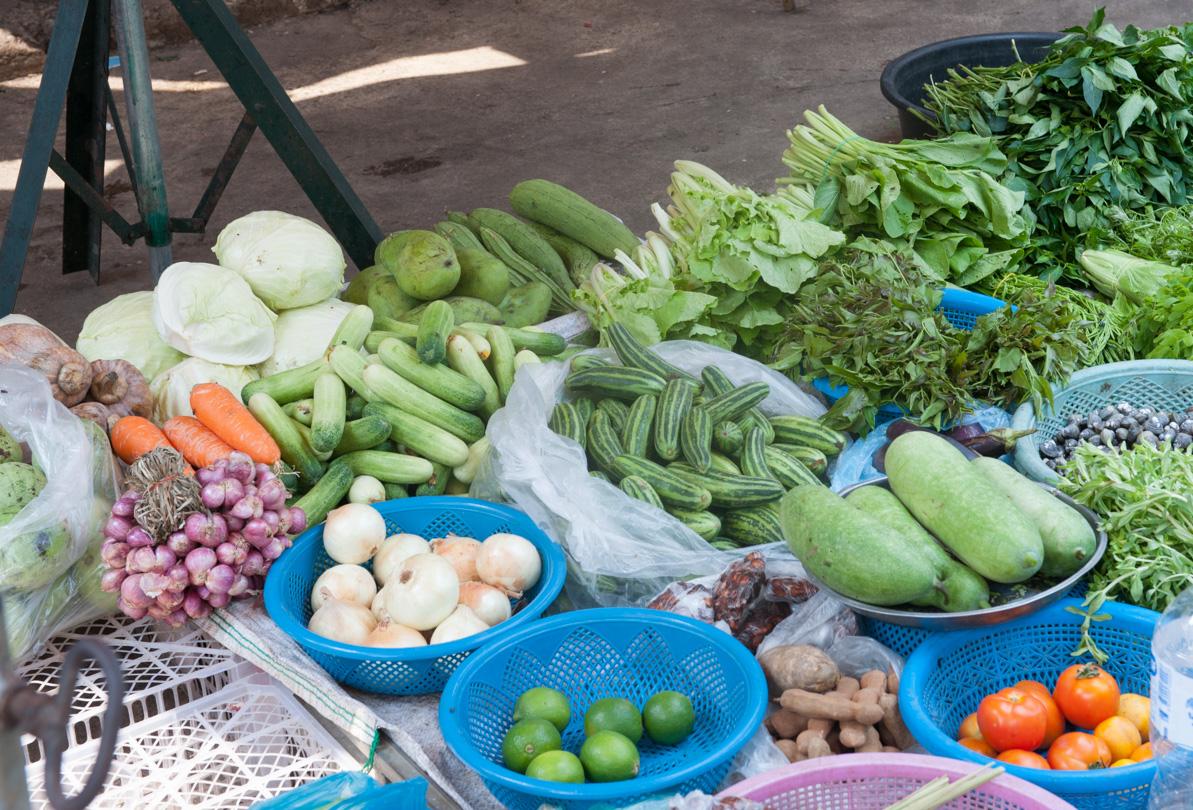 Cambodge Battambang-23