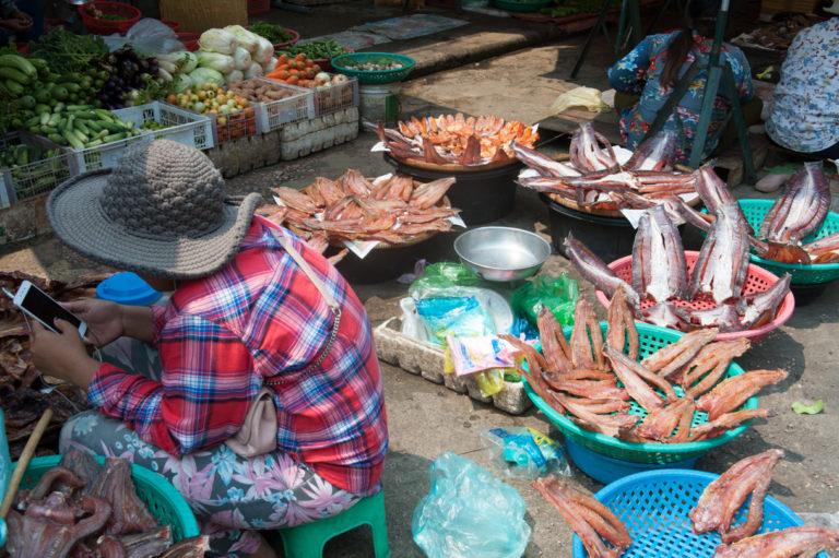Cambodge Battambang-24
