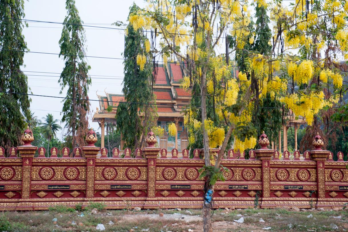 Cambodge Battambang-27