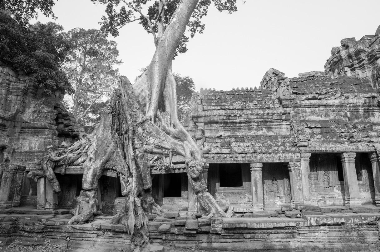 Cambodge Temples d'Angkor-148