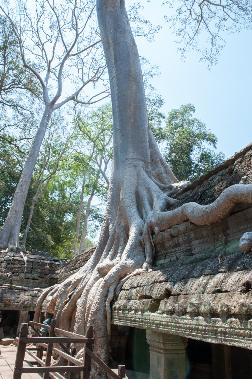 Cambodge Temples d'Angkor-83