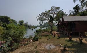 Laos Don Det Mathieu-1