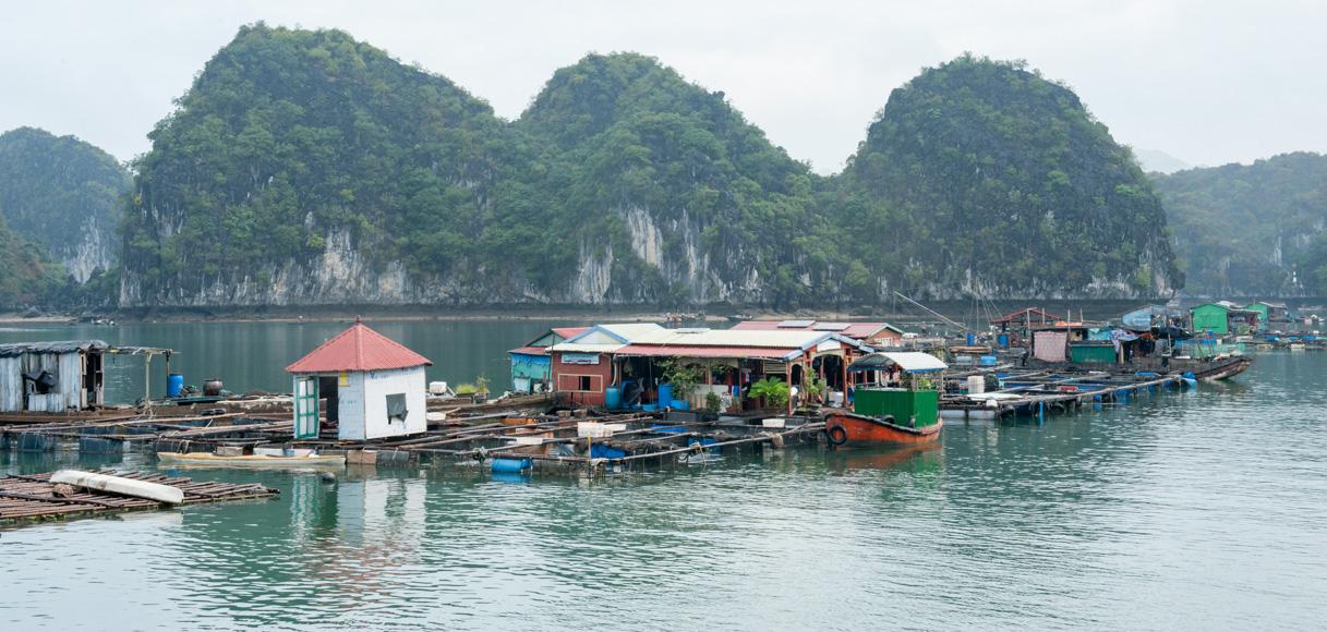 Vietnam - Halong Bay-13