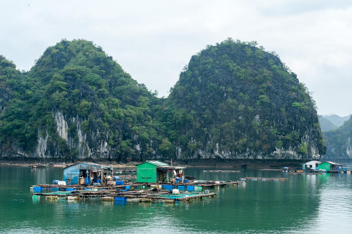 Vietnam - Halong Bay-15