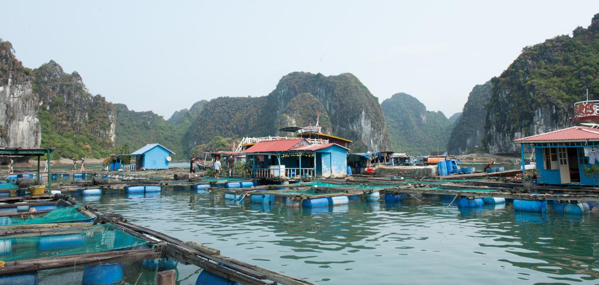Vietnam - Halong Bay-20