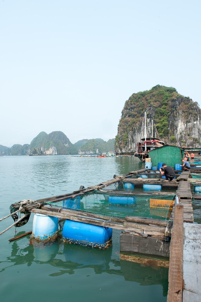 Vietnam - Halong Bay-21