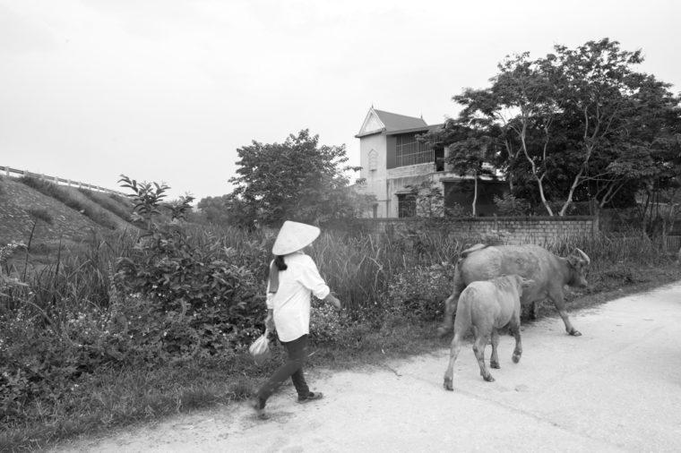 Vietnam - Phong Nha-67