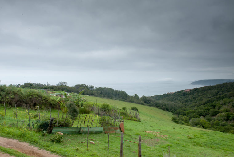The wild Farm Wilderness-1