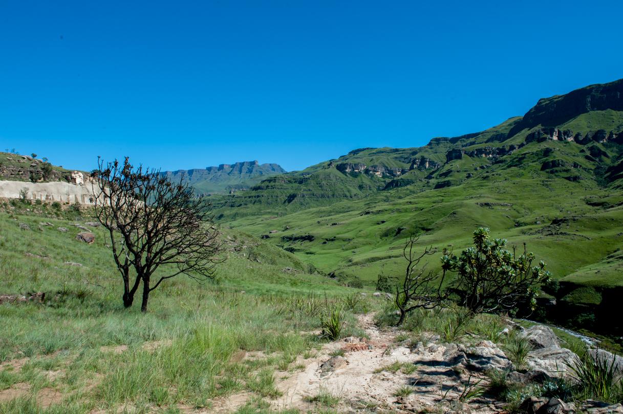 Southern Drakensberg-26