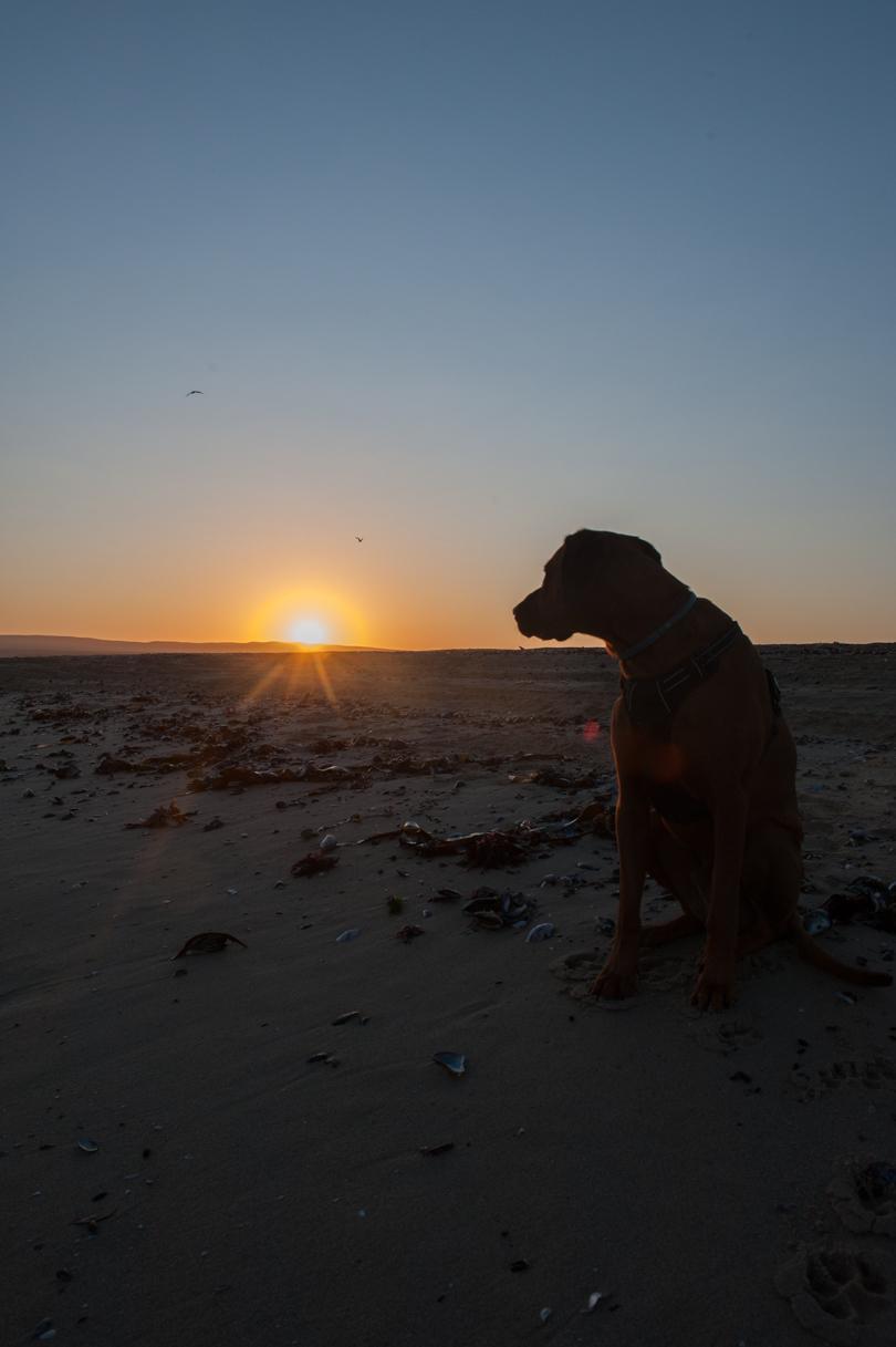 Swakopmund Namibie-48